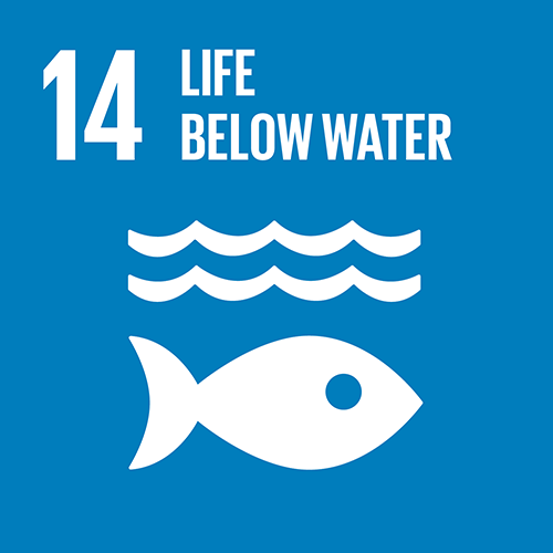 14. Conserve and sustainably use the oceans, seas and marine resources